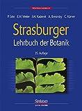 Image de Strasburger. Lehrbuch der Botanik für Hochschulen