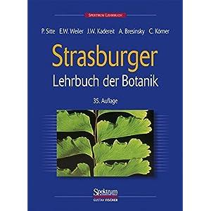 Strasburger. Lehrbuch der Botanik für Hochschulen