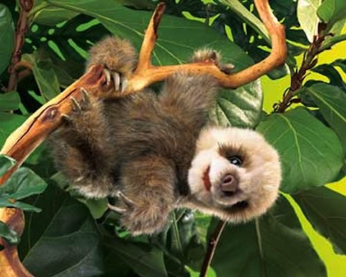 Folkmanis Baby Sloth