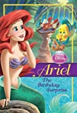 Disney Princess: Ariel: The Birthday Surprise (Disney Princess Chapter Book)