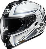 ショウエイ(SHOEI) バイクヘルメット フルフェイス GT-Air EXPANSE(エクスパンス) TC-6 (WHITE/SILVER) L (59cm)