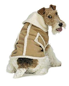 shearling coat dog