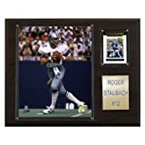 NFL Roger Staubach Dallas Cowboys Player Plaque