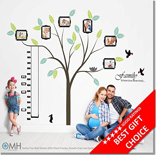 Large-Family-Tree-Wall-Decor-Stickers-with-Photo-Frames-Quotes-and-Growth-Chart-The-1-and-Only-Tree-You-Need-In-Your-Home