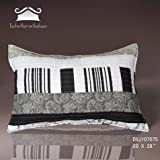 Tache 2 Piece 100% Cotton 20 x 28 Inches New York Penthouse Throw Pillow Case Cover