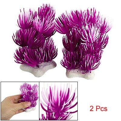 Purple White Plastic