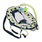 Hauck Leisure E Motion Baby Bouncer Fruits
