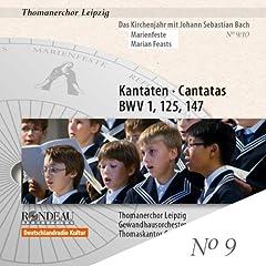 Wie schon leuchtet der Morgenstern, BWV 1: Recitative: Ein irdscher Glanz, ein leiblich Licht (Bass)