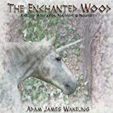 The Enchanted Wood - Guided