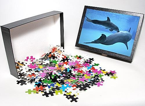 Photo Jigsaw Puzzle Of Bottlenose Dolphin - Newborn Baby / Calf Nursing / Feeding From Mother front-928754