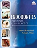 img - for Endodontics: Principles and Practice book / textbook / text book