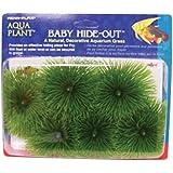 Penn Plax Baby Hide-Out Breading Grass for Aquarium
