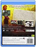 Image de The lady - L'amore per la libertà [Blu-ray] [Import italien]