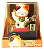 Solar Powered Nodding Lucky Calico Kitty-No Batteries required!