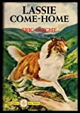 THE BIG BOOK OF FAVORITE (Favourite) DOG STORIES: Lassie Come Home; Blood Will Tell; One Minute Longer; Mind Reading Dog; The Dog of Pompeii; Pattidge Dog; Gulliver the Great; Red Wull; Dog Story; For the Love of a Man; Snapshot of a Dog; A Hunters Horn