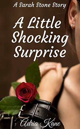 A Little Shocking Surprise: A Sarah Stone Story (Girls Behaving Badly Book 3) PDF