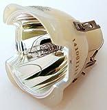 SP-A800B Samsung Projector Bulb Rep