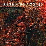 Addendum ~ Assemblage 23