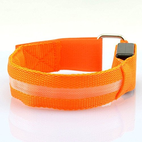 LED Sports Armband Flashing Safety Light for Running, Cycling or Walking At Night Set of 2 (Orange, Medium - up to 13 inch circumference) (Armband Light For Running compare prices)