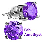 Feramox Sterling Silver Round Cubic Zirconia Diamond Birthstone Stud Earrings for Women February