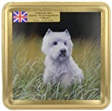 Grandma Wild's Scottie Dog Embossed Biscuit Tin with Chocolate Chip and Orange Biscuits300 g (Pack of 2)