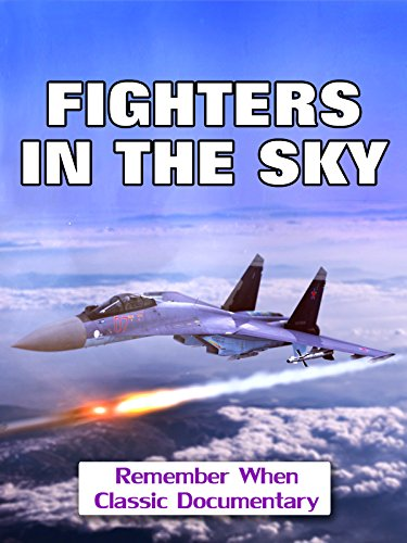 Fighters In The Sky