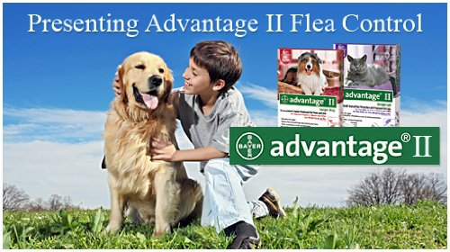 Advantage Flea Control Kit for Dogs and Cats