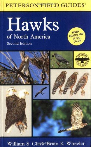 Hawks of North America (Peterson Field Guide)