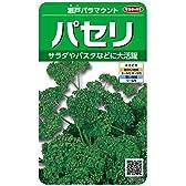 サカタのタネ 実咲野菜3081 パセリ 瀬戸パラマウント 00923081