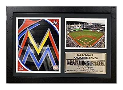 Encore Select 125-22 MLB Miami Marlins Framed Logo and Stadium Print, 12-Inch by 18-Inch