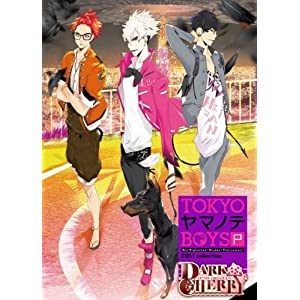 【新品】 PSP TOKYOヤマノテBOYS Portable DARK CHERRY DISC