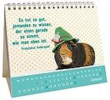 Image de Der kleine Freundschaftskalender 2016: Mini-Kalender