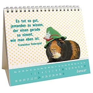 Der kleine Freundschaftskalender 2016: Mini-Kalender