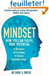 Mindset: How You Can Fulfill Your Pot...