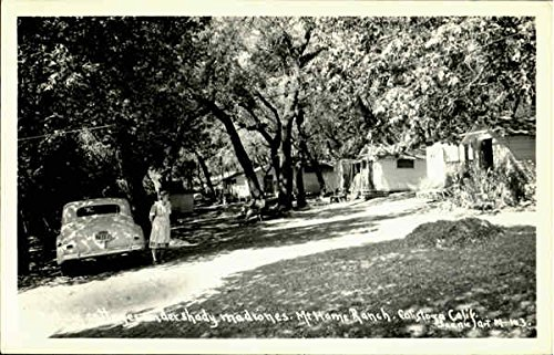deluxe-cottages-under-shady-madrones-mt-home-ranch-calistoga-california-original-vintage-postcard