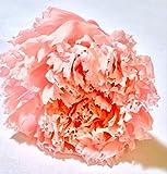 【業務用】【プリザーブドフラワー 花材】カーネーション(直径約3.5~4cm )同色10輪入り pfc4 (ピンク)