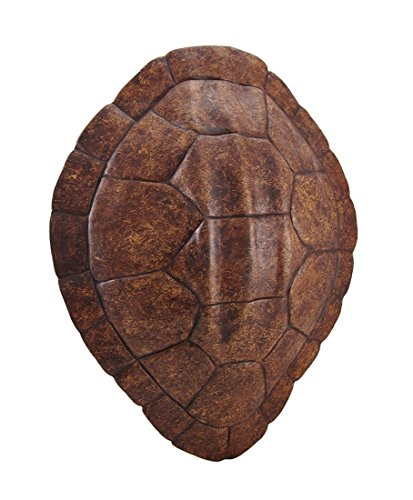 Brown Faux Sea Turtle Shell Wall Mounted Sculpture
