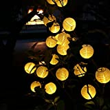 [Updated 30 LEDs ] 19.7 ft Outdoor Lantern Ball Solar String Lights, LUCKLED Fairy Globe Christmas Lights Decorative Lighting for Indoor, Garden, Home, Patio, Lawn, Party and Holiday Decorations