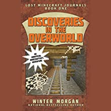 Discoveries in the Overworld Audiobook by Winter Morgan Narrated by Summer McCusker