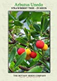 Strawberry Tree (25) Seeds - Arbutus unedo - Heirloom - Cane Apple