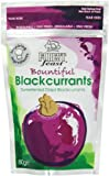 Forest Feast Mini Doypacks Bountiful Blackcurrants 80 g (Pack of 4)