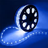 Flexible 50' LED Crystal Clear PVC Tubing Rope Light Indoor/Outdoor Boat Decorative Party Christmas Holiday Business Restaurant Light Kit 110V/60Hz Customizable Length (Blue)