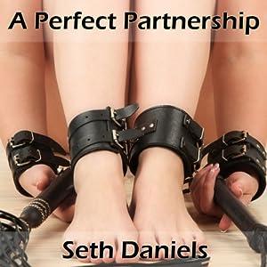 A Perfect Partnership Audiobook