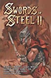 img - for Swords of Steel II book / textbook / text book