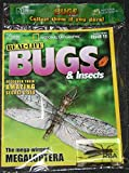National Geographic Real Life Bugs & Insects 15 - Brown Grasshopper