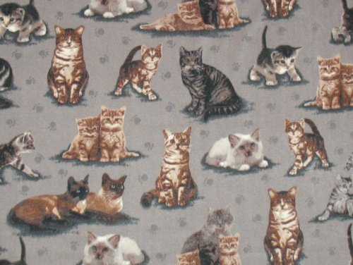 Just Kitten Around Fleece Throw Blanket front-507714