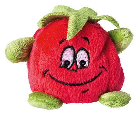 schmoozie-tomate
