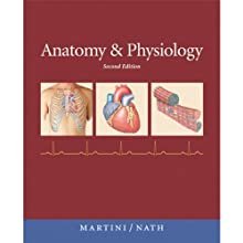 VangoNotes for Anatomy & Physiology, 2/e  by Frederic H. Martini, Judi L. Nath Narrated by Amy LeBlanc, Mark Greene