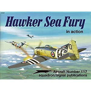 Hawker Sea Fury in Action - Aircraft No. 117 Don Greer, Perry Manley, Ron Mackay