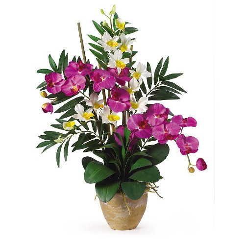 New Nearly Natural Double Phal/Dendrobium Silk Orchid Arrangement Perfect Brilliant Orchid Cream